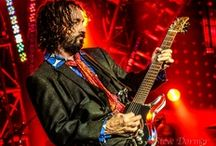 Tom Petty and the Heartbreakers / Tom Petty~ Mike Campbell  / by Anitra Gavin