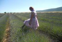 ♥ Provence♥ Sault / Můj splněný sen♥