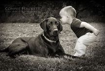 Pets / Showcasing portraits of pets (and their humans!) taken by Connie Hackett Fine Art Photography.