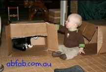 Babies in Boxes / We started with cats and then got cuter .