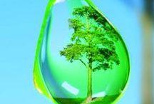 AQUA / La creatividad en imágenes sorprendentes , la cristalina imagen del agua y sus diversas formas . fotografías esplendidas ...