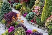 European Garden / #Landscape #Graden #Flower #Desing #Architecture