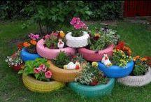 Gardening & Outside Ideas