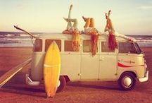 Surfer Chicks.