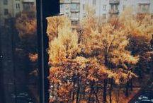 29| Outono