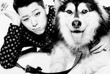 BLOCK B / Kpop