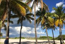 My travels / My photos taken during my trips in #Florida ,#NYC ect