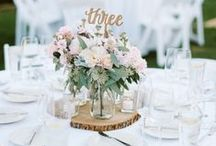 Wedding Ideas / Learn about new trends on ideas for any wedding!