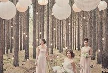 The Wedding Planner. / Collection of Wedding Plans, Ideas, Decor, Venues & Creations.