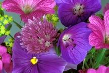 Flower Power / by Woonmagazine Online
