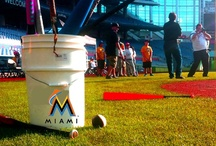 MetroPCS Miami Marlins Winter Warm Up / Pictures from the MetroPCS Marlins Winter Warm Up held Saturday, February 9th, 2013 at Marlins Park