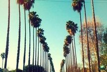 Los Angeles | 100 Cities  / A collection of images that iconify and define the Los Angeles city personality.  / by Knok