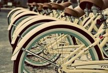Obvious Bicycle / Obvious Bicycle - Vampire Weekend / by Andressa Ferreira