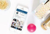SOCIAL MEDIA / Social Media Tips: Instagram, Pinterest, Twitter, Facebook, Periscope & More for Beginner Bloggers