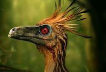 genesis || Dinosaurs & other extinct