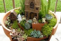 pohádkové zahrádky (fairy gardens)