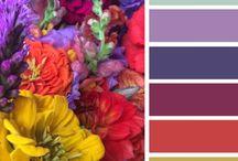 Kleurpaletten / Inspiratie