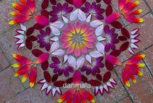 Mandala bij nature