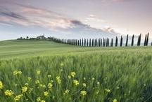 Italia, di giorno ti penso, di notte ti sogno / Sotto un involucro di sorriso e di bonomia, l'Italia è diventata il paese d'Europa più duro da vivere, quello in cui più violenta e più assillante è diventata la lotta per il denaro e per il successo.