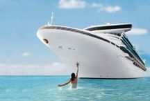 """Princess Cruises / """"From its modest beginnings in 1965 with a single ship cruising to Mexico, Princess® has grown to become one of the premiere cruise lines in the world. Today, its fleet carries more than a million passengers each year to more worldwide destinations than any other major line"""""""