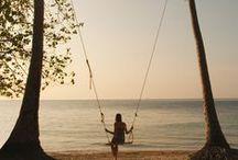 Sun, Sand, & Sea / beach, ocean, water, island, life, salt water, blue, waves, peace, free, spirit, tropical, summer, surf, underwater, dolphins, whales, shells. / by Diana C. Brown