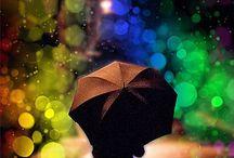 Pluie / Rain
