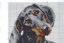 Cross stitch:Dogs