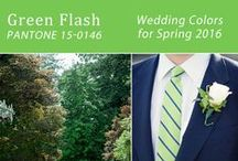 Color My Wedding / A look at our favorite wedding Colors!