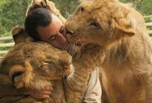 Precious moments with animals