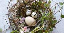 La tavola di Pasqua / Ispirazioni primaverili, al naturale, per decorare la tavola del giorno di Pasqua