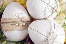 Home Pasqua