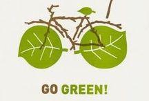 Green PHLY