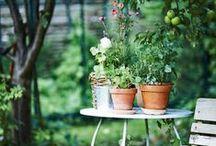 Backyard ideas / Backyards, gardens, terraces, outdoors