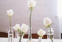 White Roses / Simple and elegant