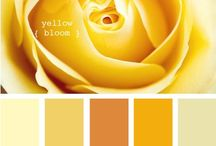 Yellow Shades / Color palette