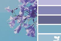 Purple Shades / Color palette