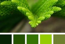 Green Shades / Color palette