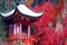 Japan ♥ / About japanese culture :)