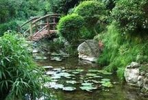 Сад Водный
