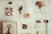cabinet curiosités