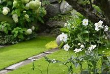 Simple Garden / Living in Skandinavia, I believe beauty is to find in the simple designs, yet with elegant details.
