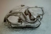 dessins / drawings