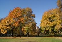 Jesienna Warszawa