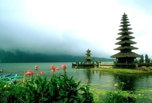 My Bali...
