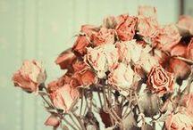 *Vintage Love