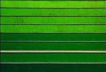 K Colors | GREEN = Web Analytics