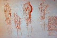 Drawing Legs / Drawing Legs