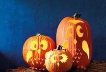Halloween / Halloween ideas for food, decoration.