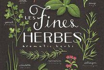 Jardinage/herbes