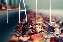Autumn & Halloween / ...